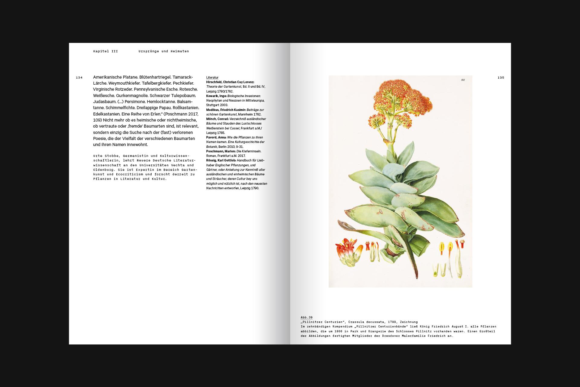 SSW_DHMD_Pflanzen_18