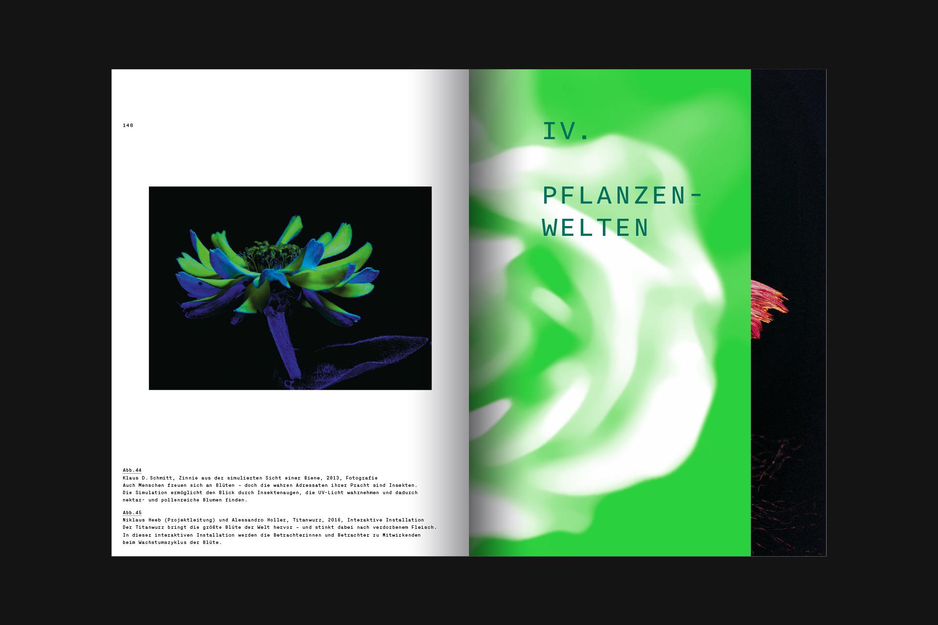 SSW_DHMD_Pflanzen_22