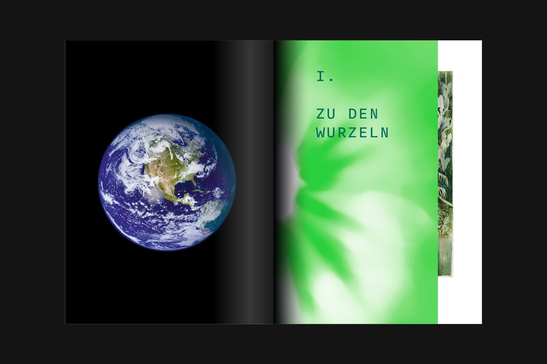 SSW_DHMD_Pflanzen_6